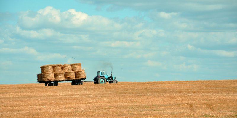 農家 ブランディング